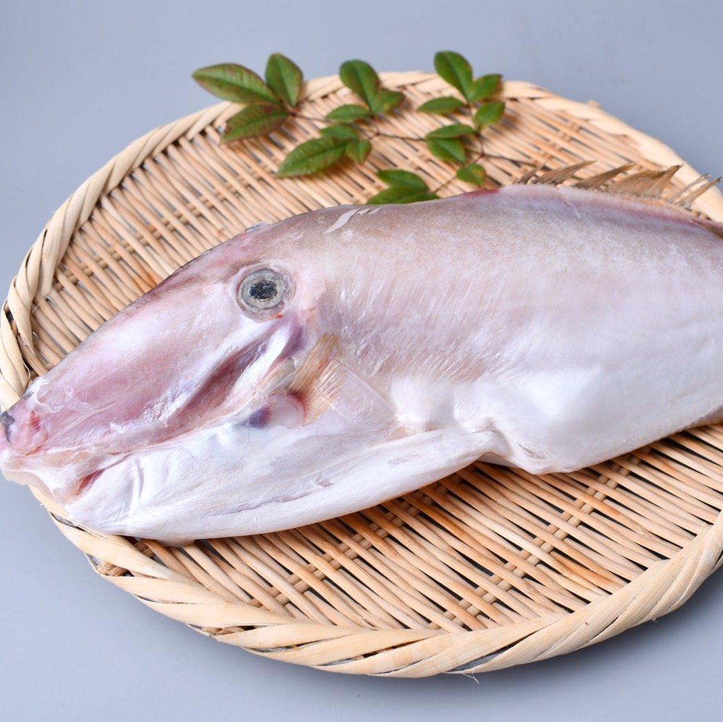 剝皮魚(450g)