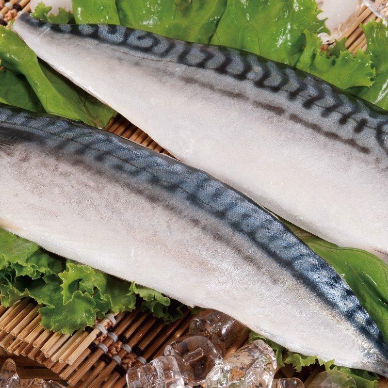 挪威鯖魚(2片、5片補貨中、1尾)