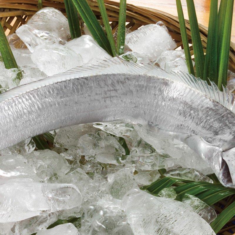 白帶魚 250公克